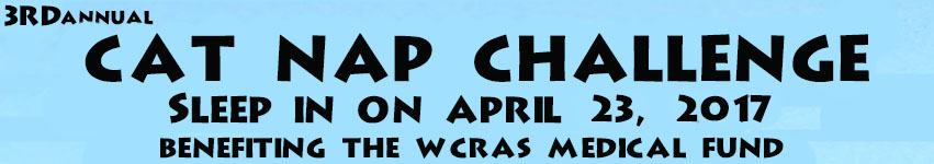 3rd cap nap challenge sleep in on april 23, 2017 benefiting the wcras medical fund