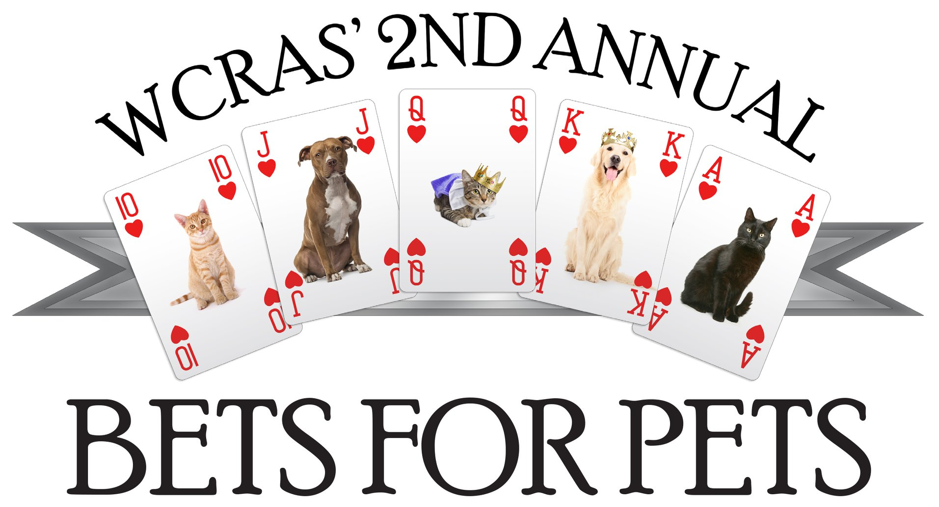 Bets for Pets banner